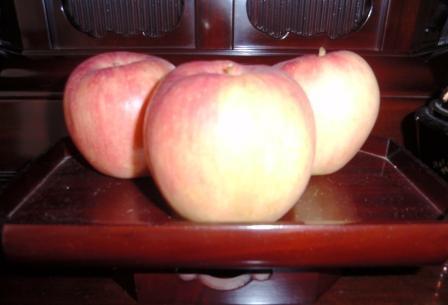 りんごの歌 001.JPG